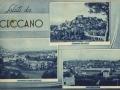 Saponificio Annunziata Ceccano (FR)