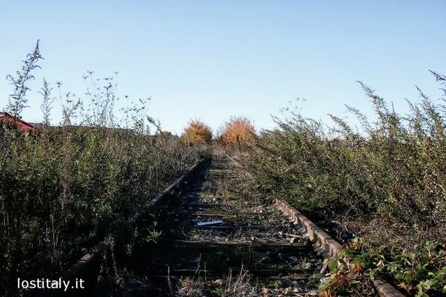 FerroviaAlfa_MB_16